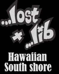 Hawaiian South Shore - lost july15