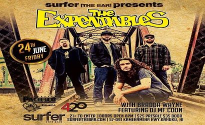 Surfer, the Bar Expendables 6.24