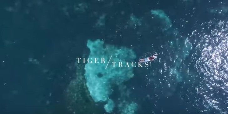 Tigertracks
