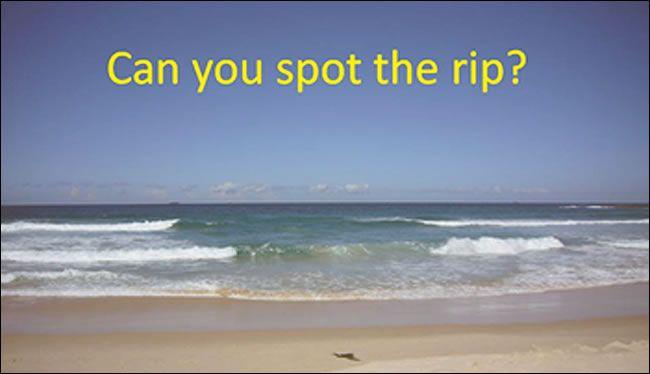 rip spot_the_rip