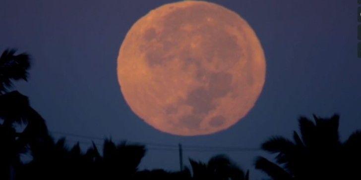 terry-full-moon-set