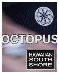 Hawaiian South Shore : Octopus