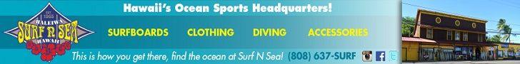 Surf n Sea 728×90 generic 2.1.20