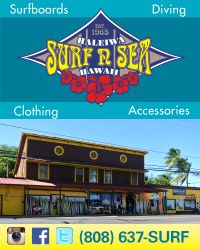 Surf n Sea 200×250 Generic