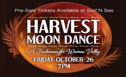 Surf n Sea Oct Harvest Moon