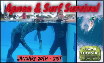 Eco Divers Apnea Course 1/20-21 2019